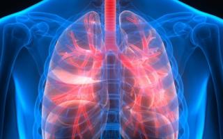 Пневмония в стадии разрешения