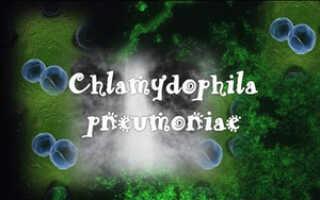 Хламидийная пневмония симптомы